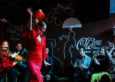 Show de dança flamenca